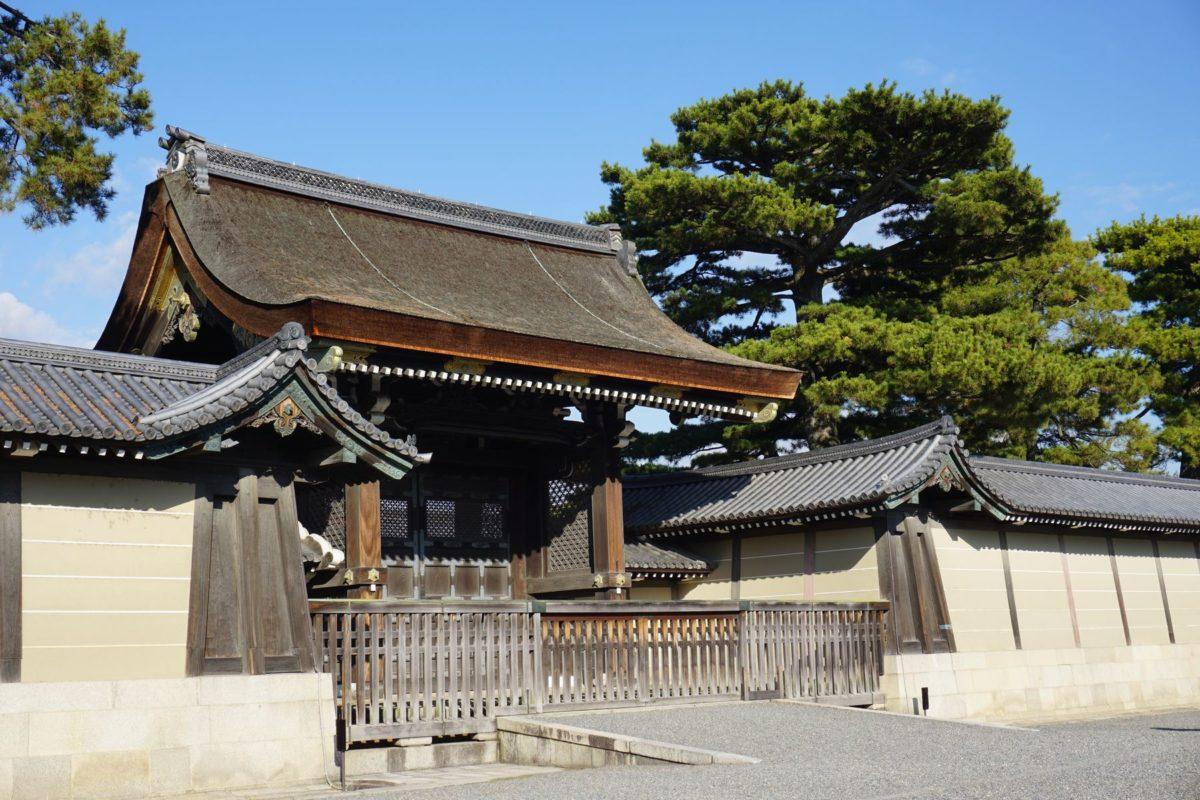 スタジオ近傍の京都御苑の八重桜です(著者撮影)